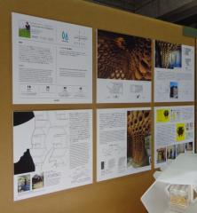 インセクタリウムインストールの詳細,クリストファー・カルテンバッハ/カルテンバッハ研究室/アクションファインドコピーペースト, Next Eco Design展2016.