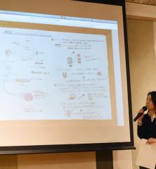 Marin Maezawa / Vol.4 2015 Systems Design Thinking Workshop / Kaltenbach lab / Christopher Kaltenbach